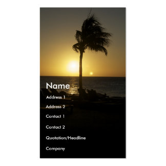 Sunny days and sunsets Double-Sided standard business cards (Pack of 100)