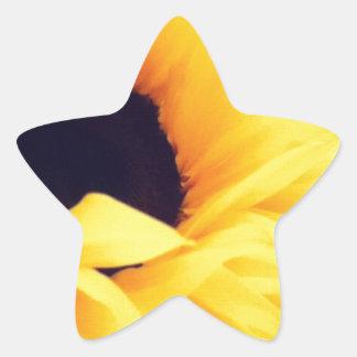 Sunny Days! Star Sticker