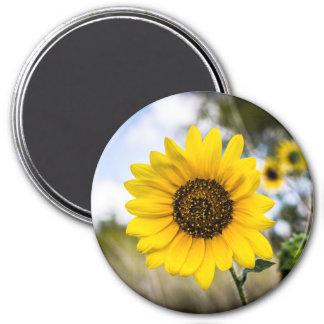 Sunny Daze Magnet
