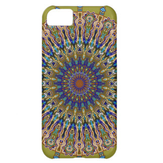 Sunny Fall Day Kaleidoscope iPhone 5C Cases