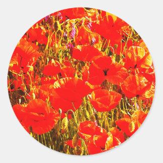 Sunny Field of Red Poppies Wildflowers Art Design Classic Round Sticker