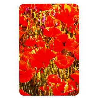Sunny Field of Red Poppies Wildflowers Art Design Magnet