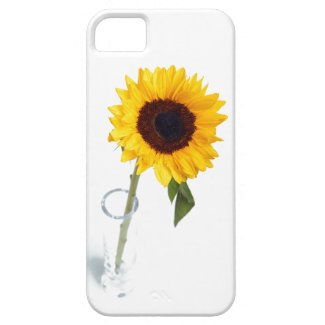 Sunny floral bright Sunflower flower photograph