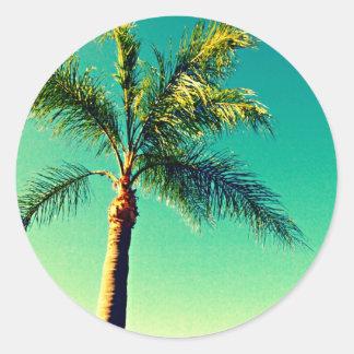 Sunny Florida Palm Tree Sky Picture Classic Round Sticker