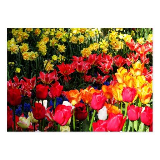 Sunny Garden Business Card Template