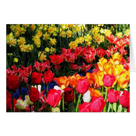 Sunny Garden Card