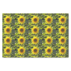 Sunny Gold Sunflower Tissue Paper