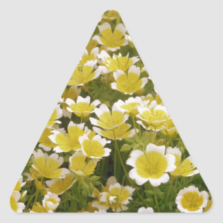 Sunny Gold White Flowers Triangle Sticker