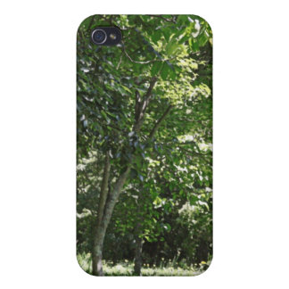 Sunny Greenland l Nature Photography iPhone 4/4S Case