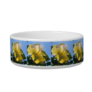 Sunny Hibiscus Bowl