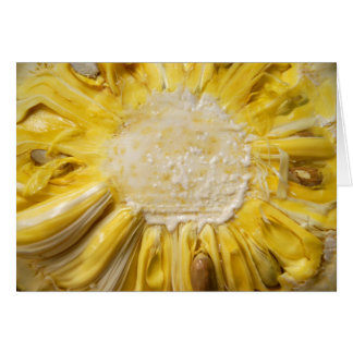 Sunny Jackfruit Card