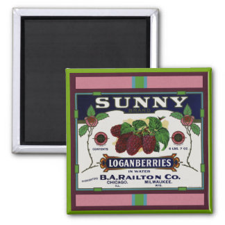 Sunny Loganberry Fruit Magnet