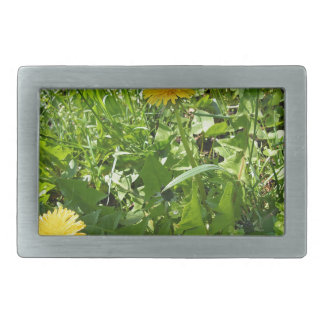 Sunny meadow with yellow dandelions belt buckle