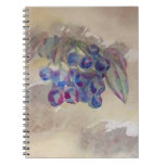 Sunny Morning Blueberries Kitchen Cooking Foods Spiral Notebook