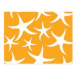 Sunny Orange and White Starfish Pattern. Post Card