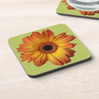 Sunny Orange gerbera flower bloom Drink Coaster