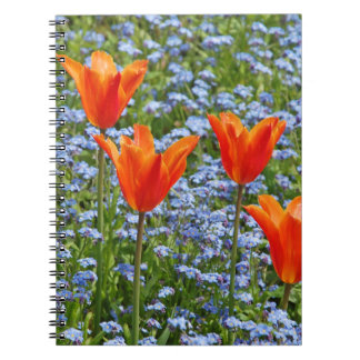 Sunny orange tulips in blue floral meadow print notebook