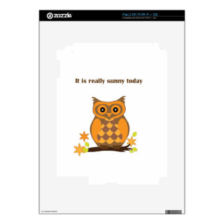 Sunny Owl Decal For The iPad 2