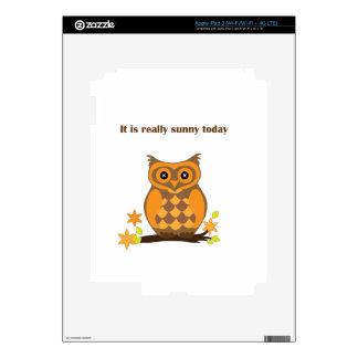 Sunny Owl Skin For iPad 3