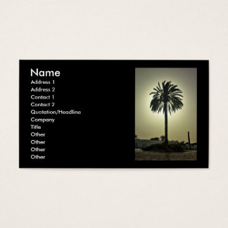 Sunny Palm Business Card