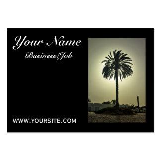 Sunny Palm Business Card Templates