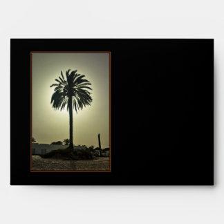 Sunny Palm Envelope