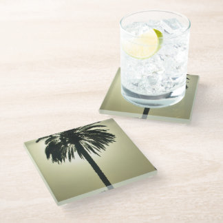 Sunny Palm Glass Coaster