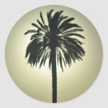 Sunny Palm Stickers