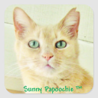 SUNNY PAPOOCHIE STICKERS