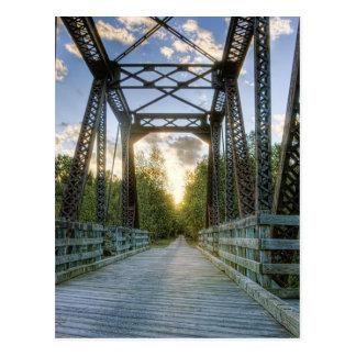Sunny Path Postcard