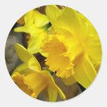 Sunny Petals Round Stickers