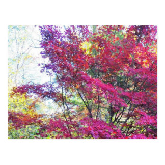 Sunny Pink And Purple Leaves Post Cards