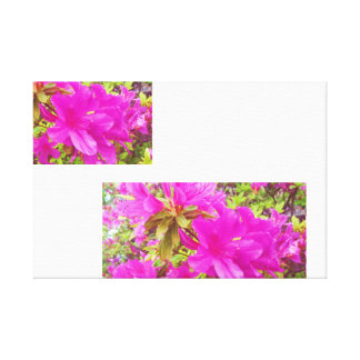 Sunny Pink Flower Floral Blossom Print Canvas