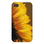 Sunny Profile iphone 4 case