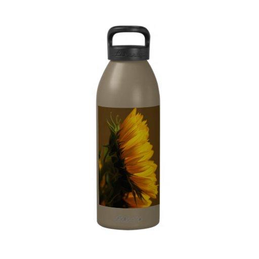 Sunny Profile water bottle