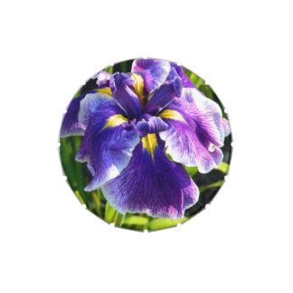 Sunny Purple Iris Candy Tin