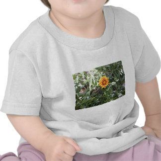 Sunny Red and Yellow Blossom T Shirts