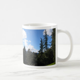 Sunny Redwoods mug