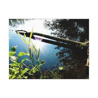 Sunny Riverbank Canvas Print