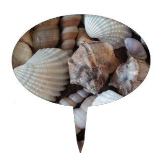 Sunny Seashells Collection Nature Summer Cake Topper