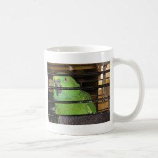 Sunny Side Up Yellow Nape Coffee Mug