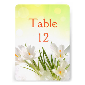 Sunny Spring White Iris Table Number Card