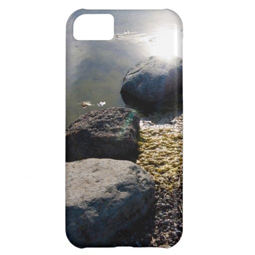 Sunny stones iPhone 5C cases