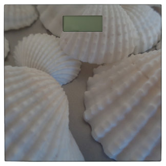Sunny Summer Beach Sea Shells Exotic Shell Bathroom Scale