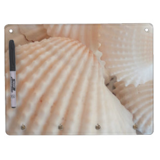 Sunny Summer Seashells. Romantic, Exotic Tropical Dry Erase Board With Keychain Holder
