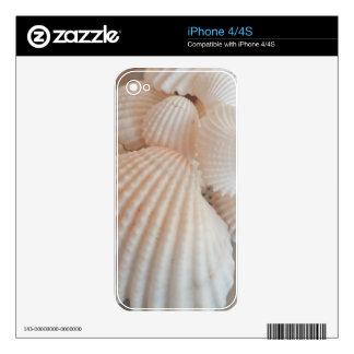 Sunny Summer Seashells. Romantic, Exotic Tropical iPhone 4S Skin