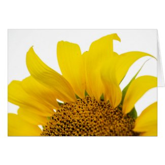 Sunny Sunflower Blank Greeting Card
