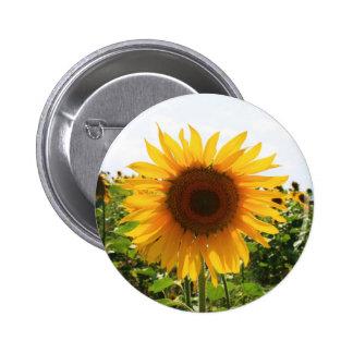 Sunny Sunflower Button