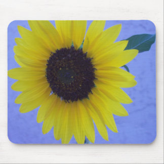 Sunny Sunflower on Blue Background Mouse Pad