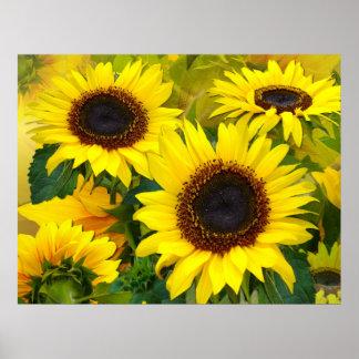 Sunny Sunflower Print